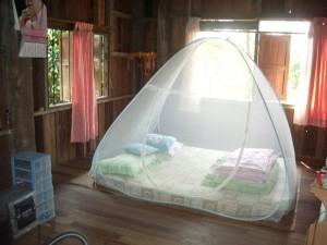Creative Mosquito Net Design