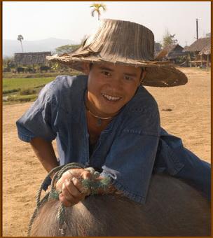 Thai peasant