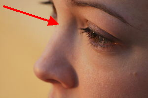 image of a nose